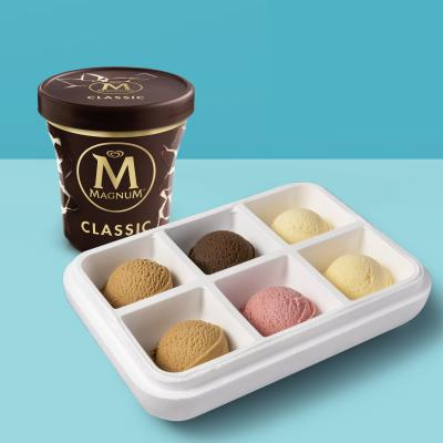 Pack especial: Surtido 6 sabores de helado Carte D'Or a elegir + 1 tarrina Magnum de 440ml (6/8 pers.)